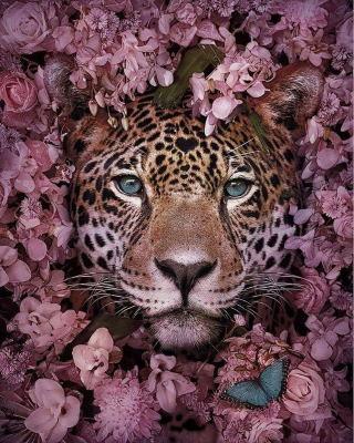 Centro Flores Nigeria, Centro de Flores de Regalo, Floristería Online, Centro de Flores a Domicilio, Expertos en el Arte Floral