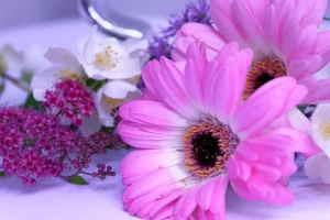Palma Funeraria Tonos Rosas, Flores para Difunto, Flores para Sepelio, Centro Funerario, Enviar Flores al Tanatorio